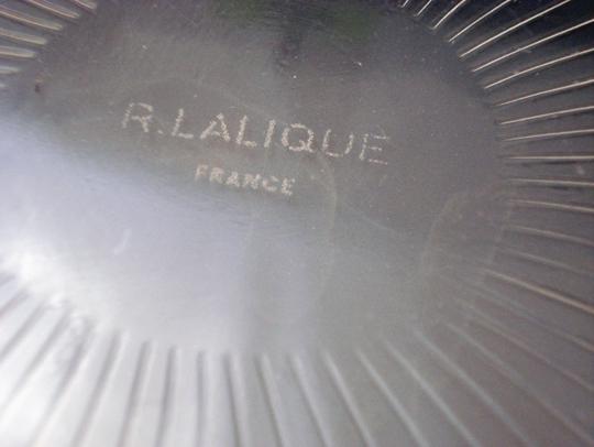鉢&皿「マーガレット」