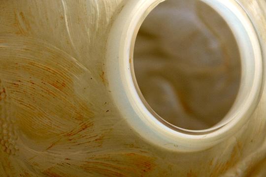 花瓶「フォルモーズ」