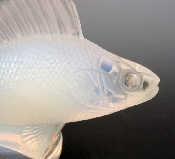 カーマスコット「魚」